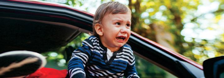 Car Seat Crazy in Evergreen?